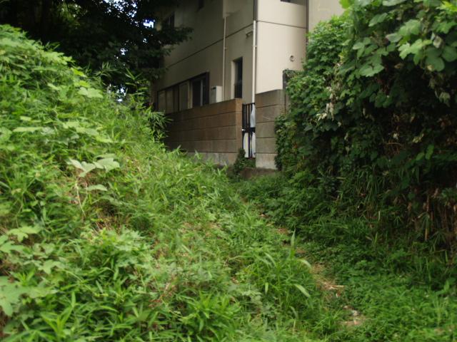 Ichikawa_006