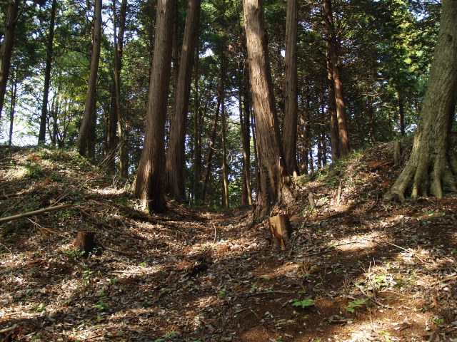 Iwahashi016