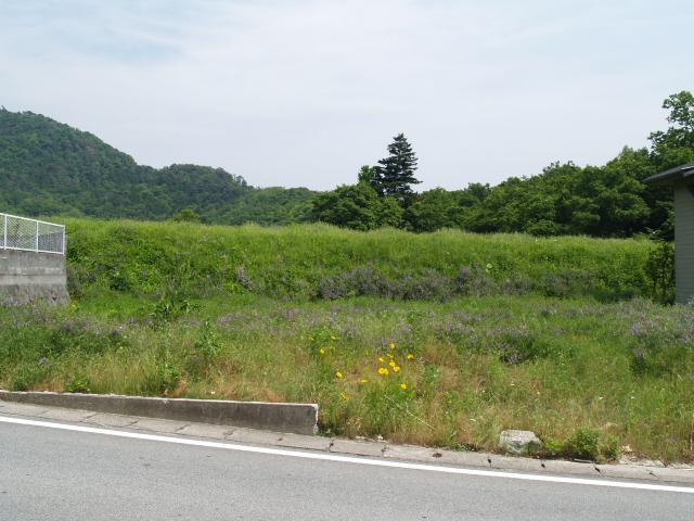 Tsutsuzigasaki_092