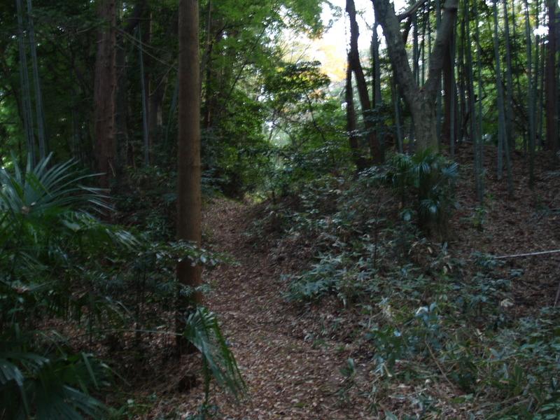 Washiyama011