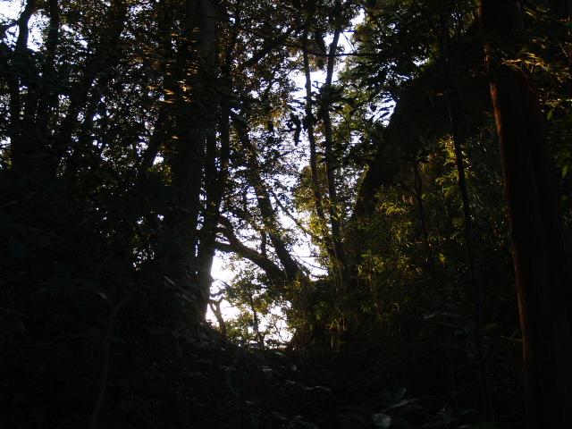 Kururi081