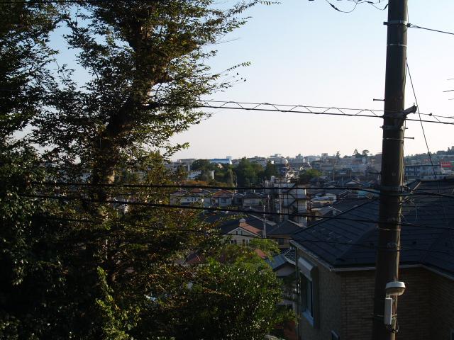 Kamihongou016