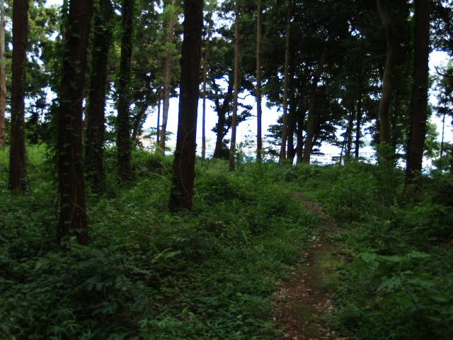 Matsugasaki_009