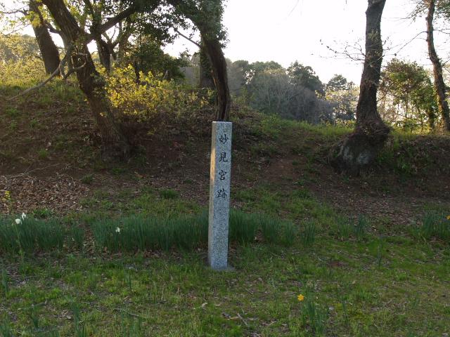 Motosakura3_140