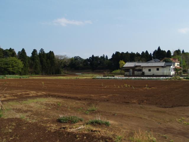 Motosakura_067