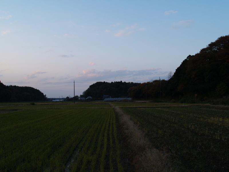 Washiyama001