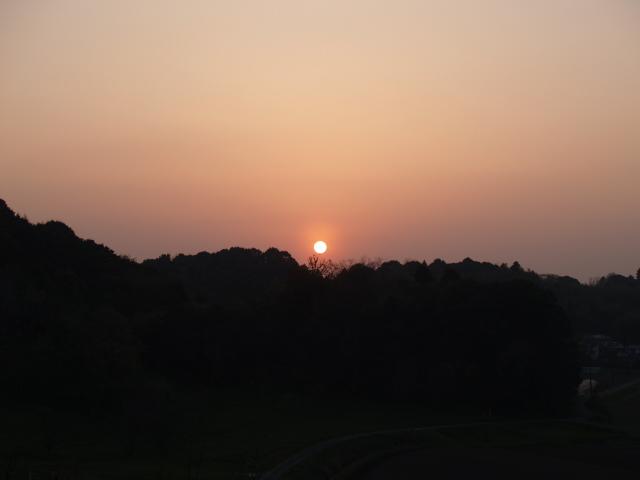 Motosakura3_196
