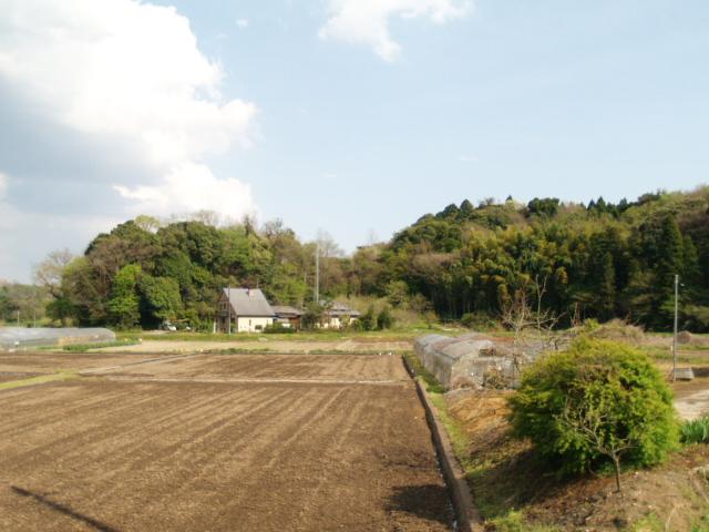 Motosakura_063