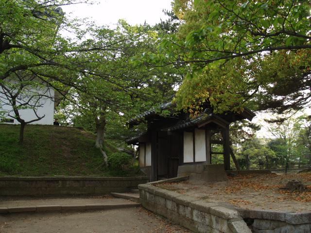 Tsuchiura056