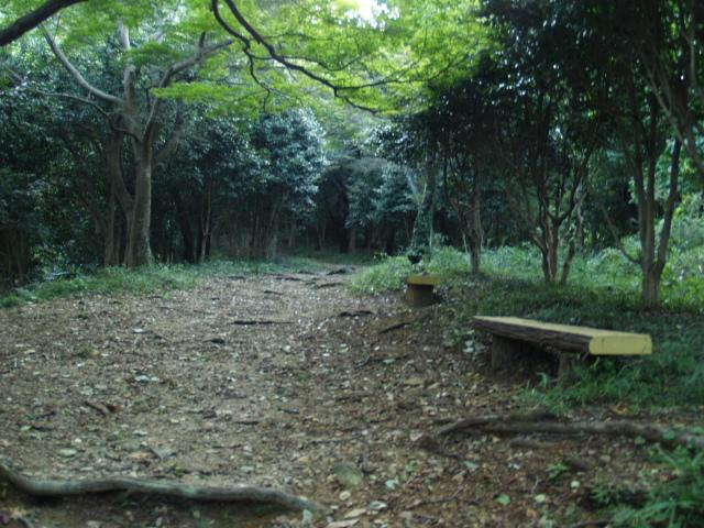 Hachiouzi_037