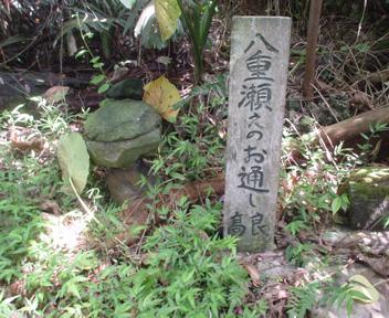 Yonagusuku15