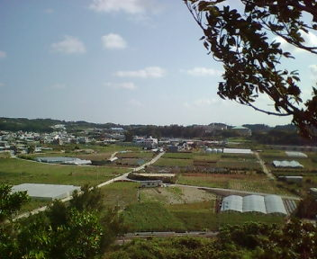 Oogusukumui211