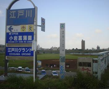 Ichikawa01