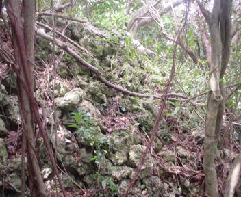 Kuniyoshi311
