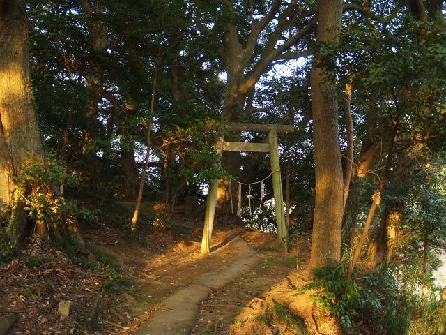 Motosakura3_146