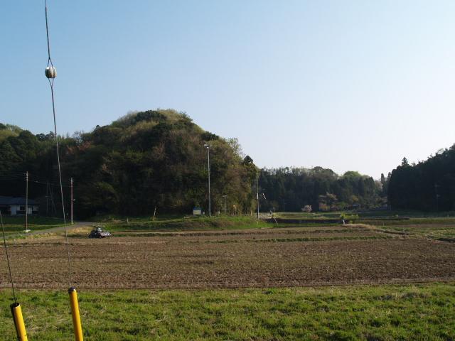 Motosakura3_062