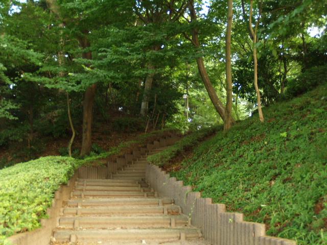 Nagareyama_013