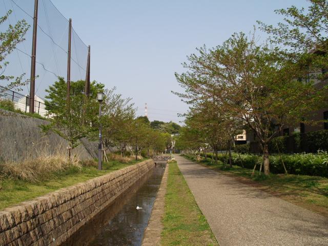 Ariyoshi_001_2