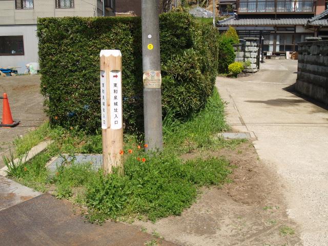 Higashiizumi005