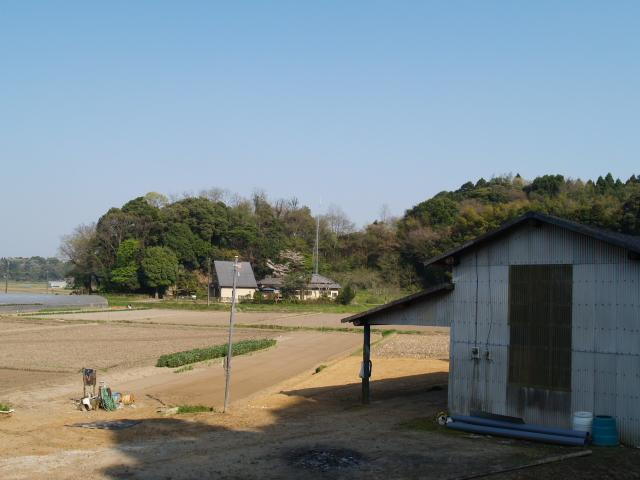 Motosakura3_0011