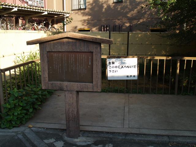 Kamihongou009