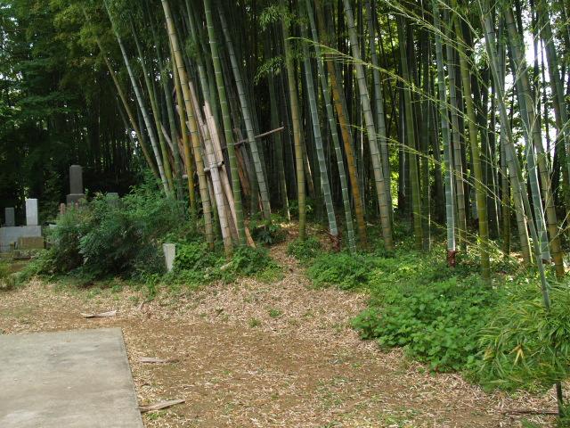 Ooguchi008