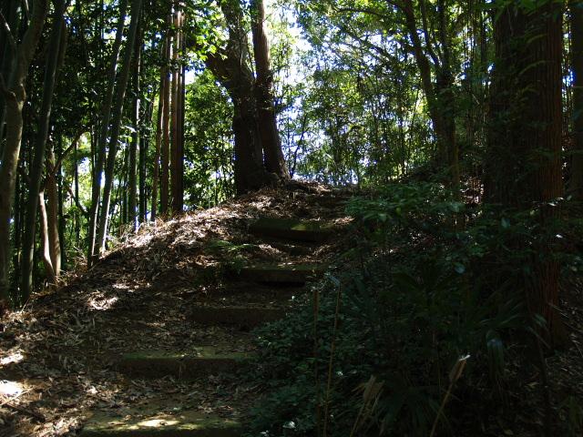 Kasakami021