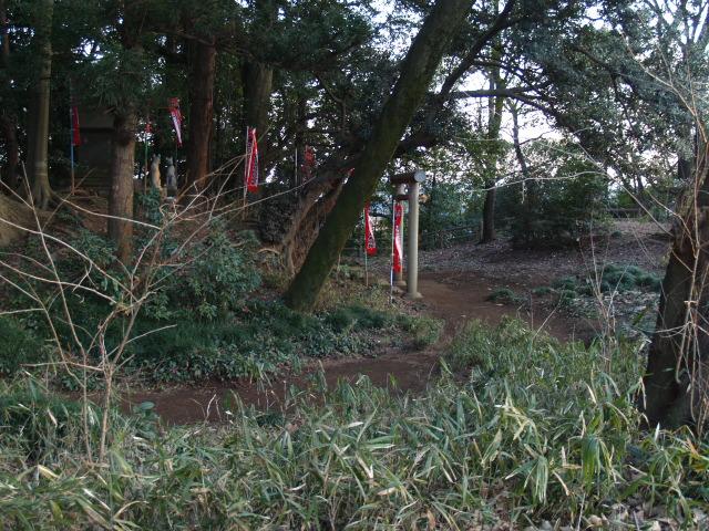 Kasiwabara41