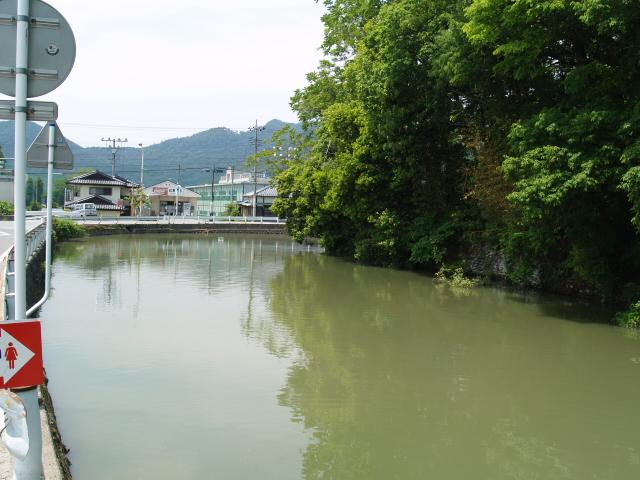 Tsutsuzigasaki_047
