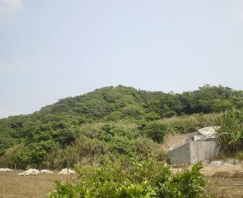 Tohashina102