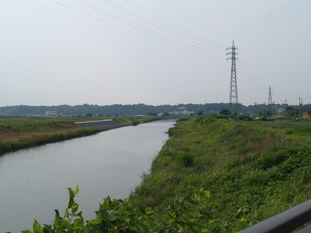 Sakura2_006