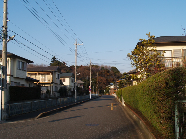 Kasiwabara01