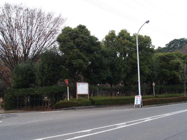Kasukabeshi001_3