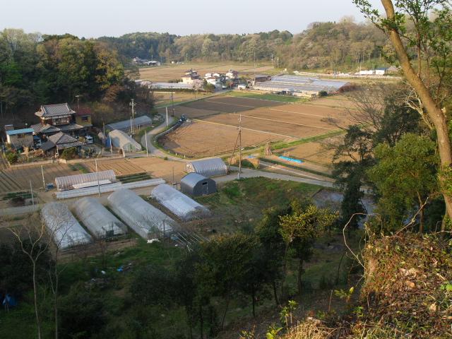 Motosakura3_122
