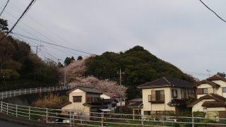 16/4/9 小見川城