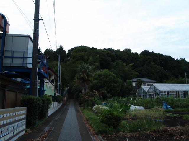 17/9/23 亀井城