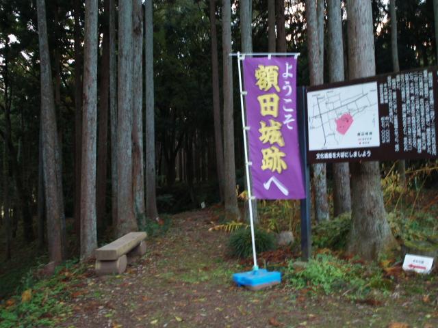 17/11/3 額田城
