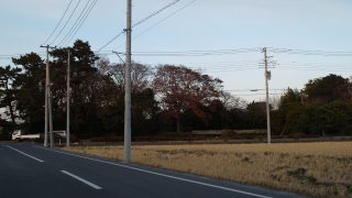 18/12/21 大相模氏館