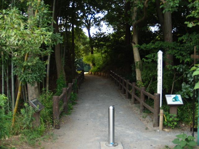 Negiuchi_007