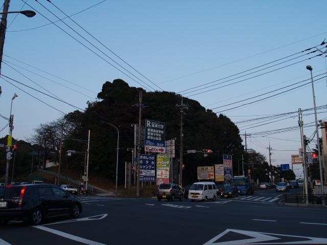 Negiuchi2002