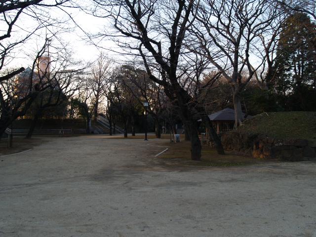 Inohana_006