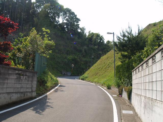 Iwahashi034