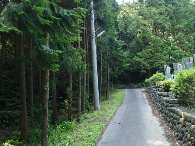 Katsunuma009_1