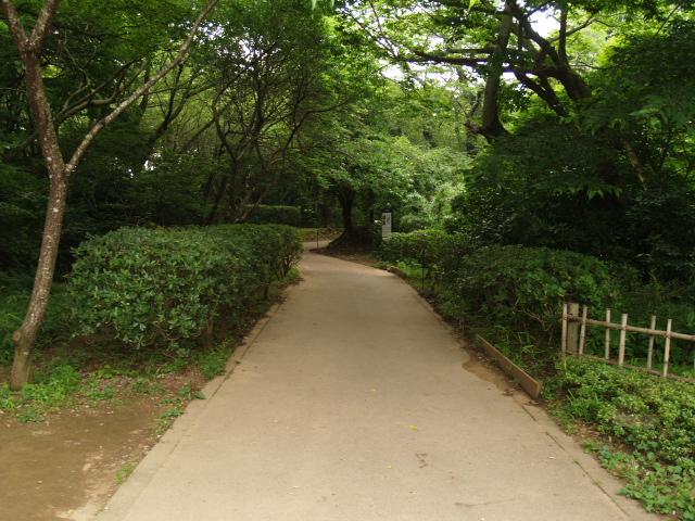 Sakura2_111_2