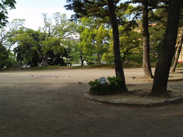 Tsuchiura044