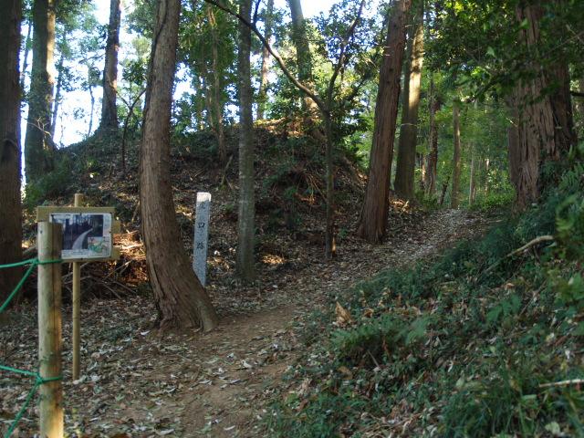 Motosakura3_034