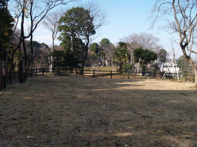 Shigasaki059