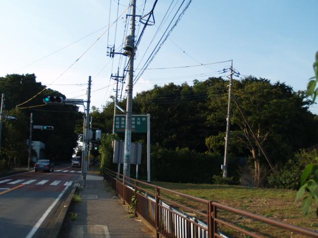 Masuo_001